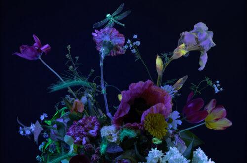 KLUB ARKEN: Kunstmøde - Blomsten i kunsten